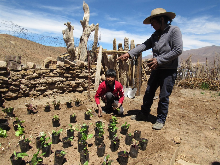 una-escuela-rural-argentina-cosechan-propios-alimentos-mas-3-000-metros-altura